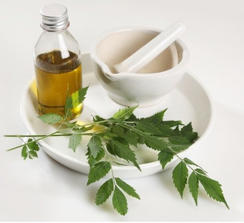 10 Best Neem Oil Available in USA for Skin Nail Scalp Psoriasis